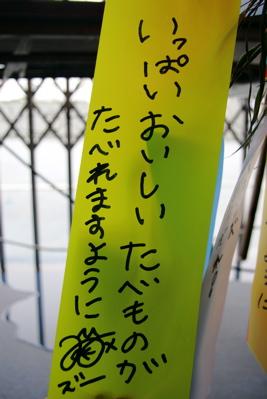 IMG_7954.jpg